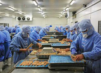Przemysłowa obróbka mięsa