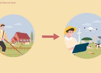 From Farm to Fork - paradoksy